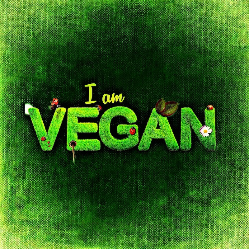 Green sign saying I am VEGAN