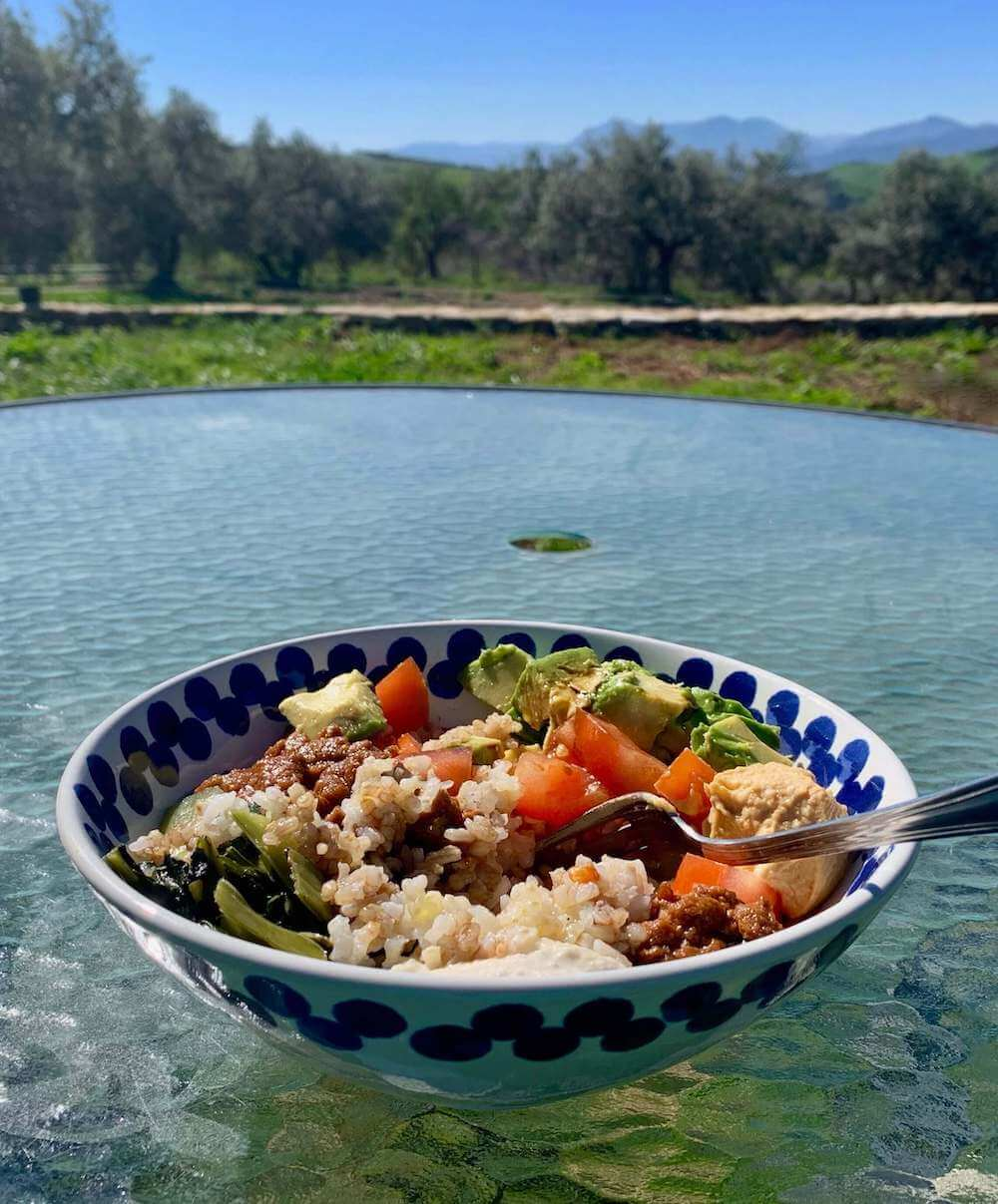 Bowl of food on a table in a garden with a view