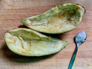 Eggplant skins